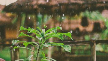 Captación de Aguas Lluvia