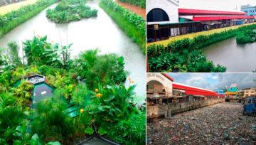 Sistema ecológico que transforma ríos contaminados en jardines flotantes
