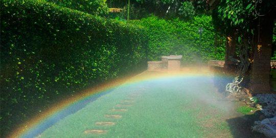 riego-automatico-jardines-casa-wamco