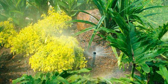 riego-jardin-residencial-barona-wamco02