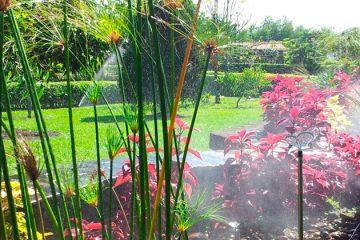 riego-jardin-residencial-nunez-wamco01