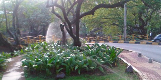 riego-jardines-rio-cali-wamco03