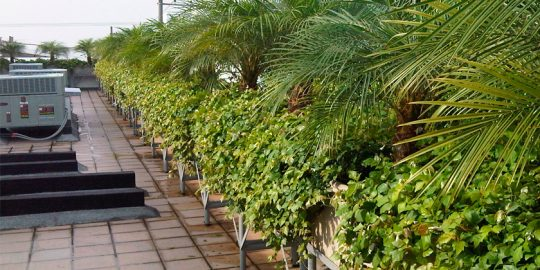 riego-jardines-terraza-tecnoquimicas